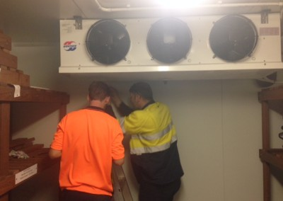 Working on cool room installation in Adelaide