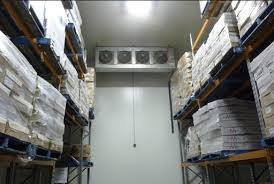 Large coolrooms with multi shelving